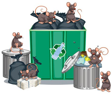 Rats looking for food from trashcans - Download Free